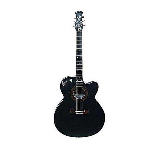 Signature Topaz Acoustic Guitar